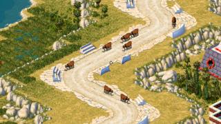 cours de vaches